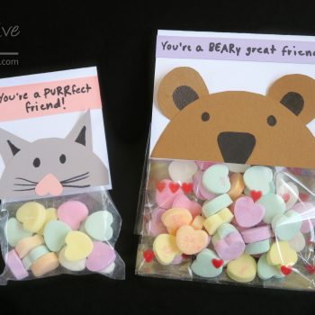Bear and Cat Treat Toppers