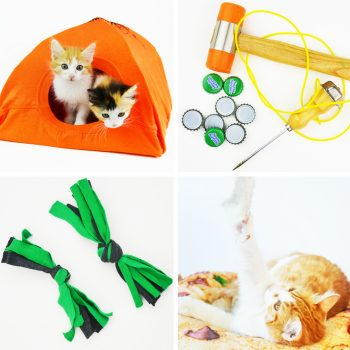 Quick and Easy Recycled Cat Toys